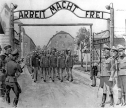 65ème anniversaire de la libération du Camp d'Auschwitz