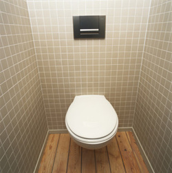 Journée mondiale des toilettes le 19 novembre