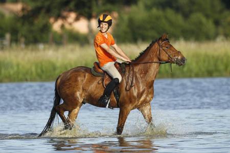 L'engouement des Français pour l'équitation se confirme