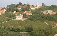 Le nord agricole de l'Italie à nouveau frappé par une grave sécheresse