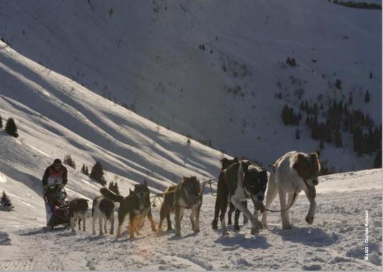 SUZUKI s'engage avec La Grande Odyssée Savoie Mont Blanc et devient « Voiture Officielle » de l'évènement