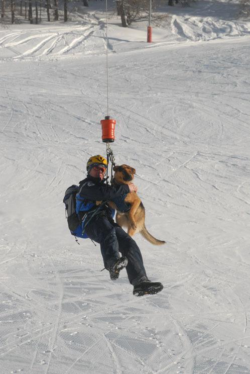 Montgenèvre accueille la formation des chiens d'avalanche de la gendarmerie