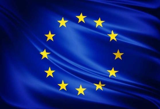 A Strasbourg, l'AFCCRE et les parlementaires européens débattent du futur cadre budgétaire de l'Union et célèbrent le cinquantenaire du Traité de l'Elysée