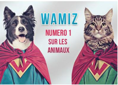 Nouveau record d'audience pour Wamiz.com, le site dédié aux animaux de compagnie
