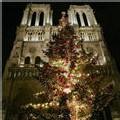 Notre DAme de Paris, en décembre 2006
