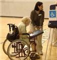 Des bureaux de vote plus accessibles