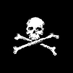 Un nouveau site gouvernemental piraté