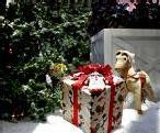 Un budget en baisse pour Noël ?