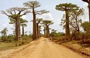Orange va connecter Madagascar à l'internet haut débit
