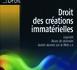 DROIT DES CRÉATIONS IMMATÉRIELLES