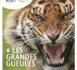 Un nouveau né dans l'édition numérique touristique : Zevisit Voyage, magazine mensuel & gratuit sur iPad