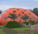 Un œuf construit en Kerto et Leno à découvrir à Venlo aux Pays-Bas