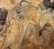 Candidature Unesco : une première étape franchie pour La Grotte Chauvet-Pont d'Arc